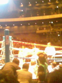 091130_boxing2.jpg