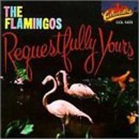 100127_flamingos2.jpg
